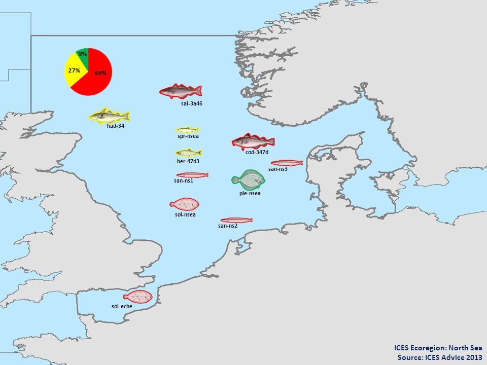 ICES Ecoregion: North Sea Source: ICES Advice 2013