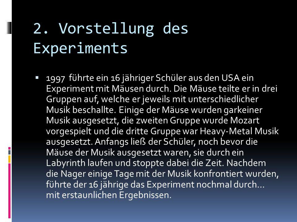 2. Vorstellung des Experiments