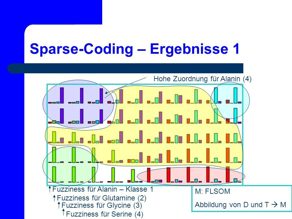Sparse-Coding – Ergebnisse 1