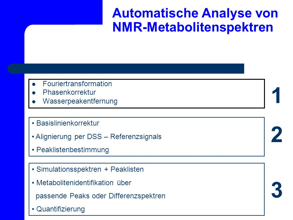 Automatische Analyse von NMR-Metabolitenspektren