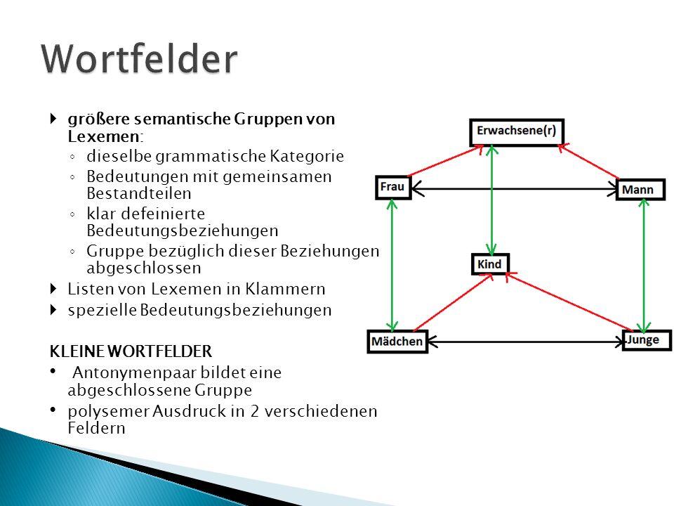 Wortfelder größere semantische Gruppen von Lexemen: