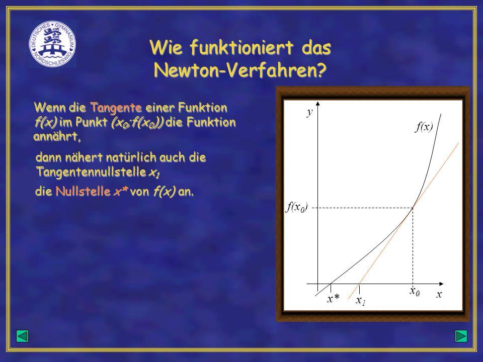 Wie funktioniert das Newton-Verfahren