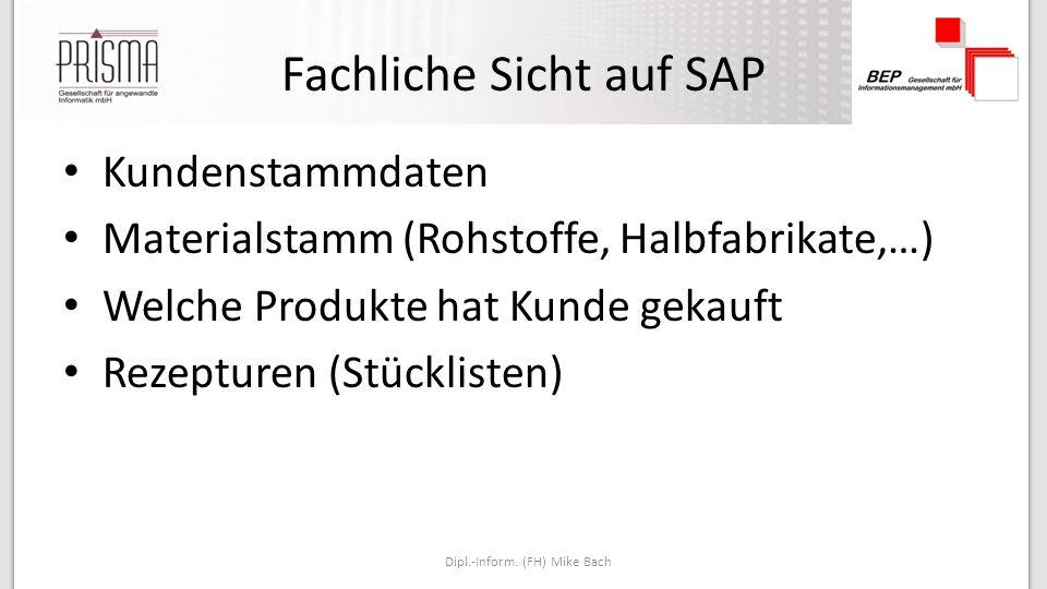 Fachliche Sicht auf SAP