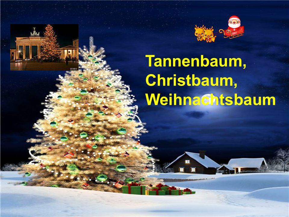 Tannenbaum, Christbaum,