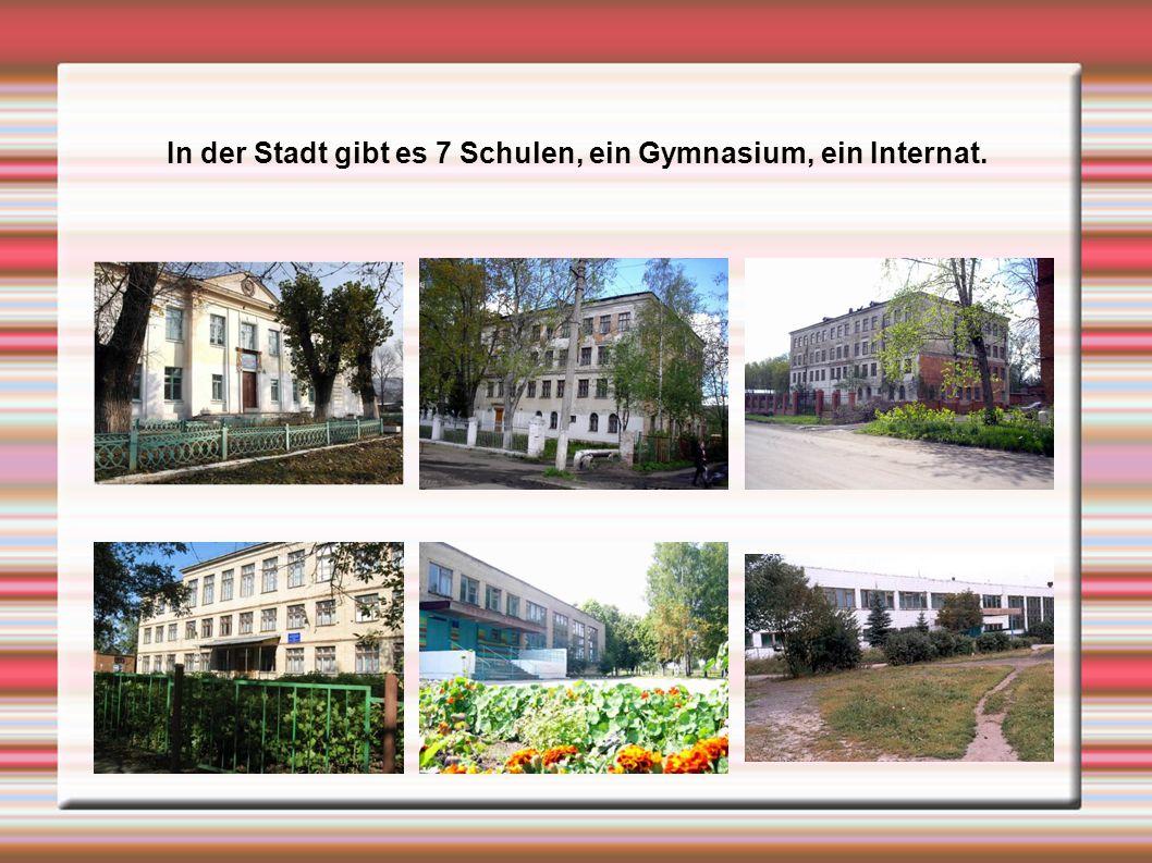 In der Stadt gibt es 7 Schulen, ein Gymnasium, ein Internat.