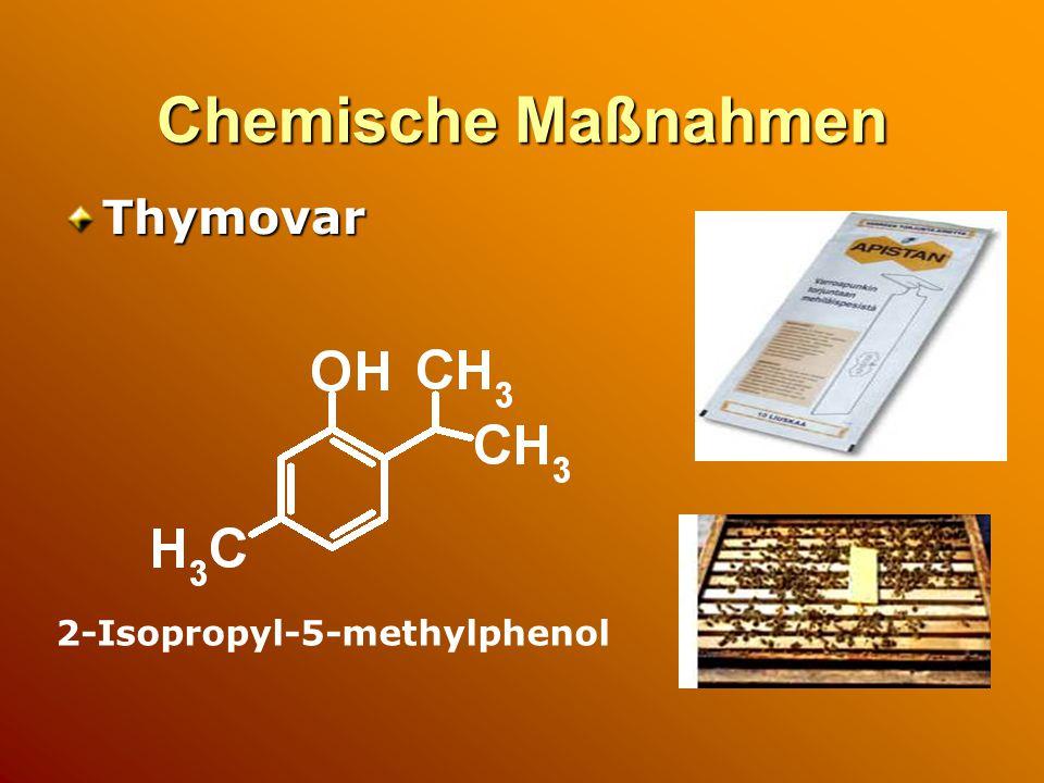 Chemische Maßnahmen Thymovar 2-Isopropyl-5-methylphenol