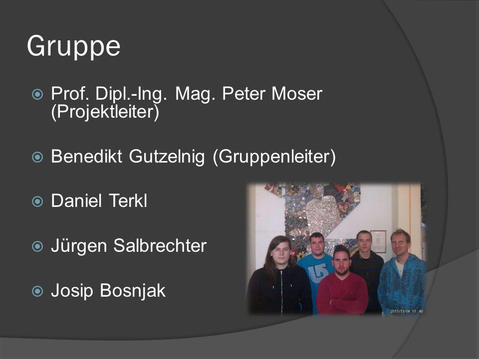 Gruppe Prof. Dipl.-Ing. Mag. Peter Moser (Projektleiter)