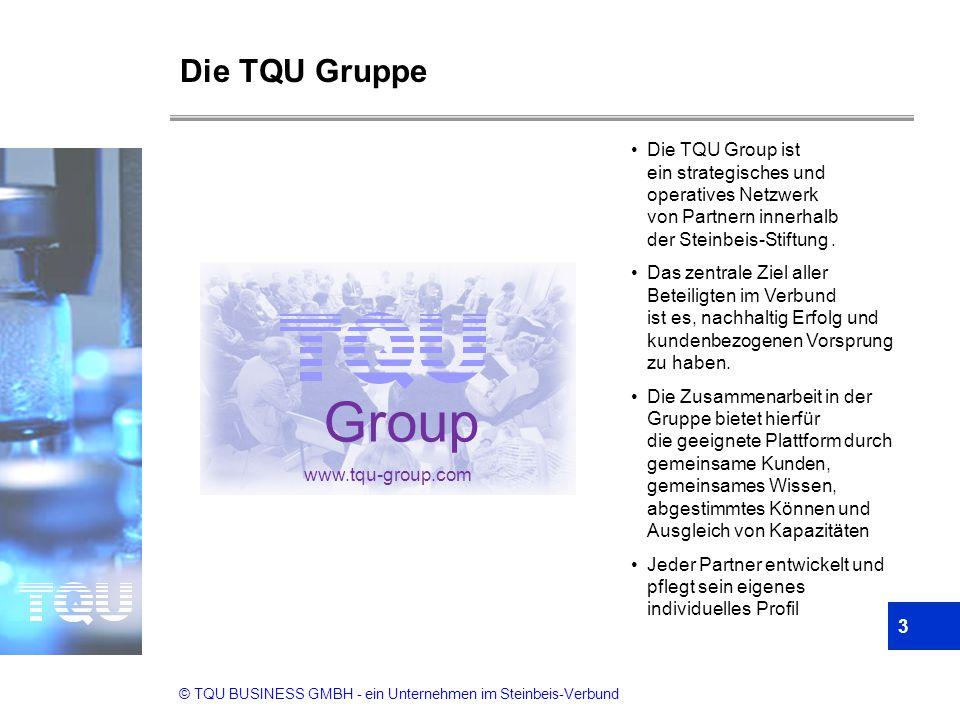 Die TQU Gruppe Die TQU Group ist ein strategisches und operatives Netzwerk von Partnern innerhalb der Steinbeis-Stiftung .