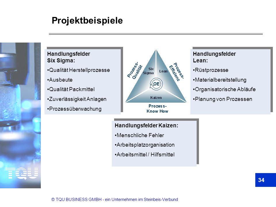 Projektbeispiele Handlungsfelder Six Sigma: Qualität Herstellprozesse