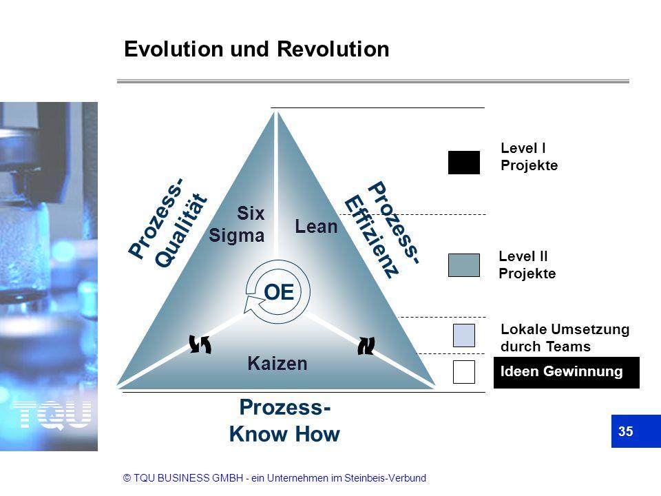 Evolution und Revolution