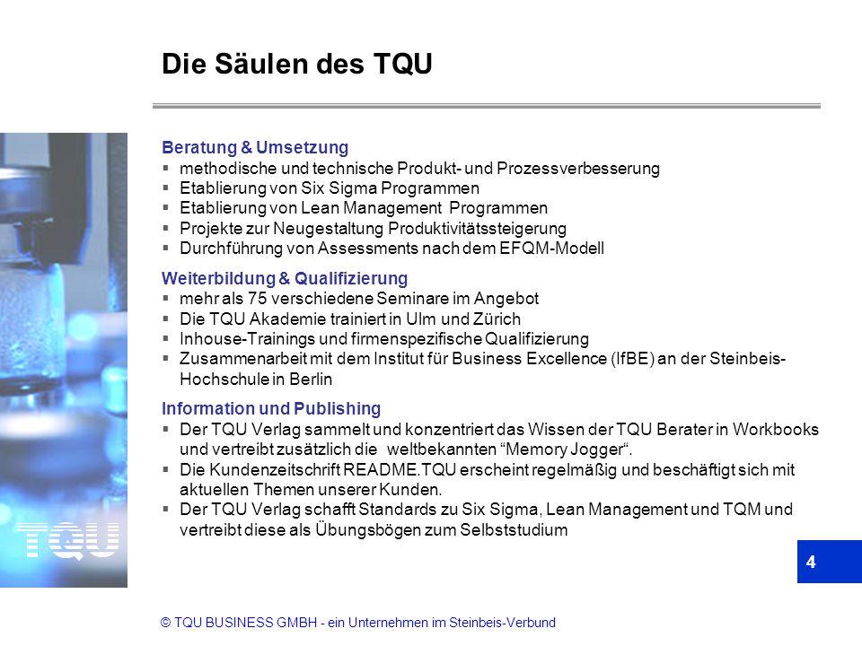 Die Säulen des TQU Beratung & Umsetzung