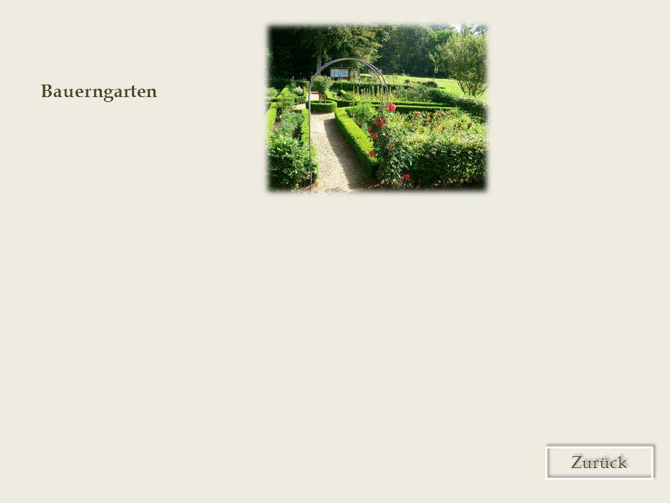 Bauerngarten Zurück