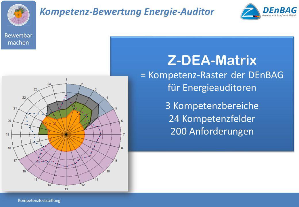 = Kompetenz-Raster der DEnBAG für Energieauditoren