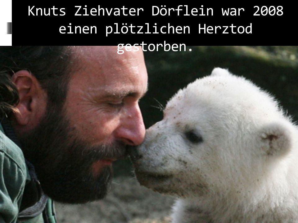 Knuts Ziehvater Dörflein war 2008 einen plötzlichen Herztod gestorben.