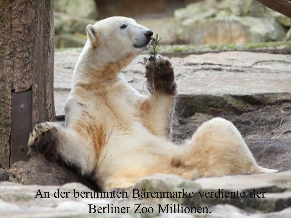 An der berühmten Bärenmarke verdiente der Berliner Zoo Millionen.