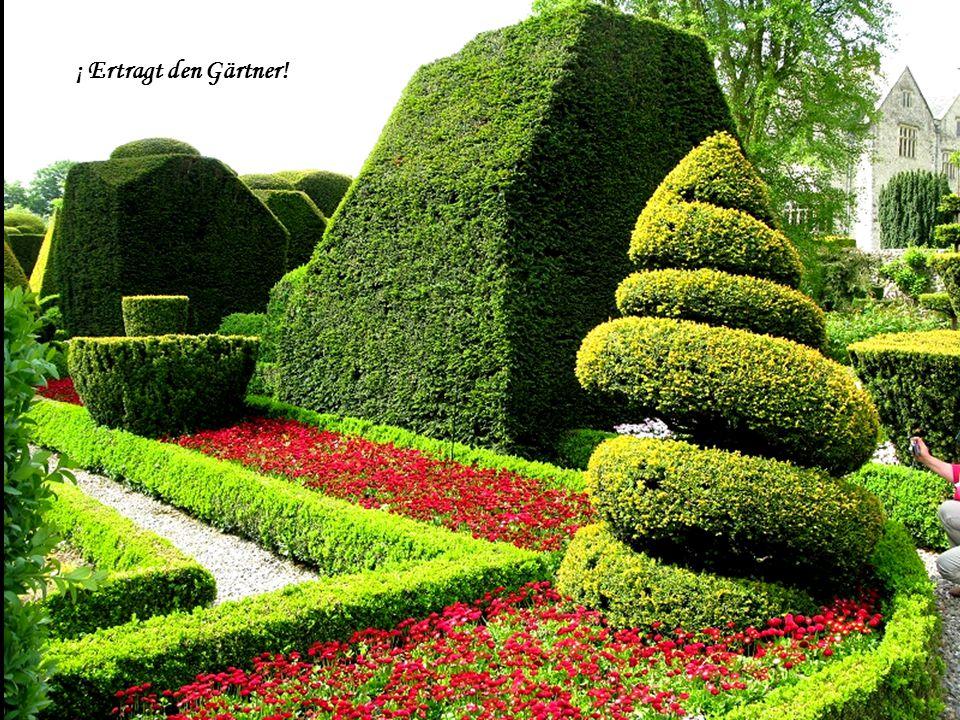 ¡ Ertragt den Gärtner!