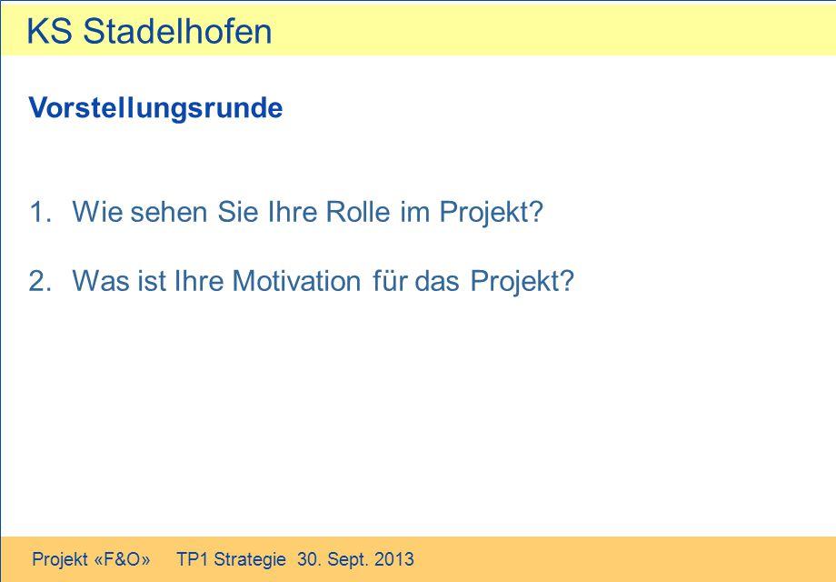 Wie sehen Sie Ihre Rolle im Projekt