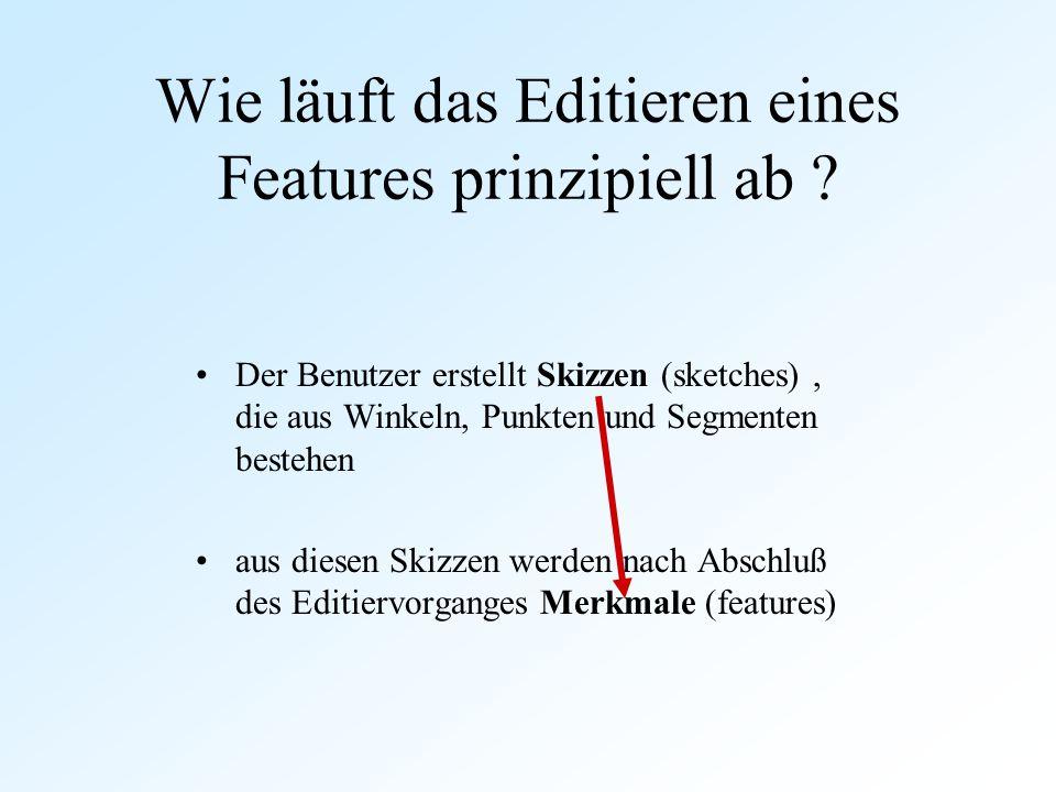 Wie läuft das Editieren eines Features prinzipiell ab