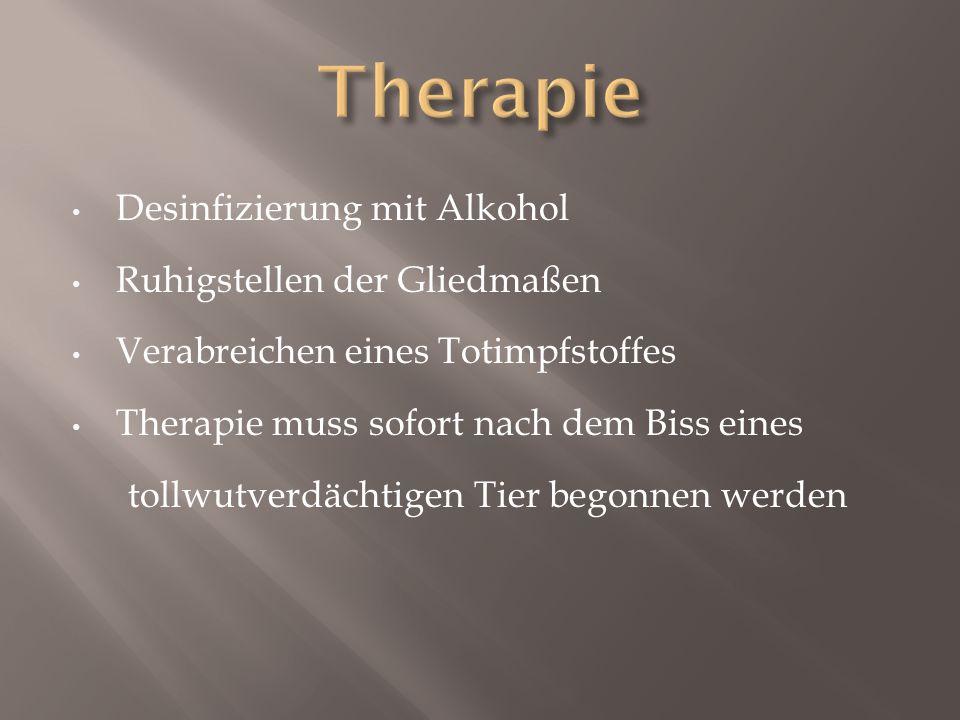 Therapie Desinfizierung mit Alkohol Ruhigstellen der Gliedmaßen