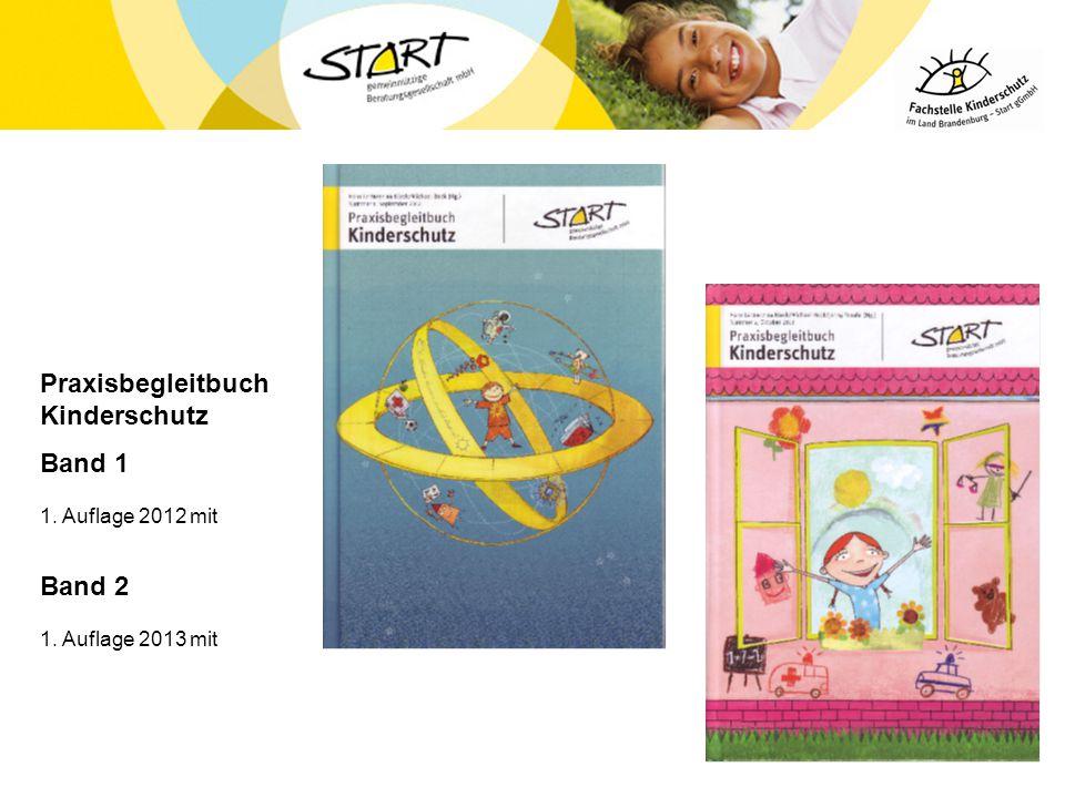 Praxisbegleitbuch Kinderschutz Band 1