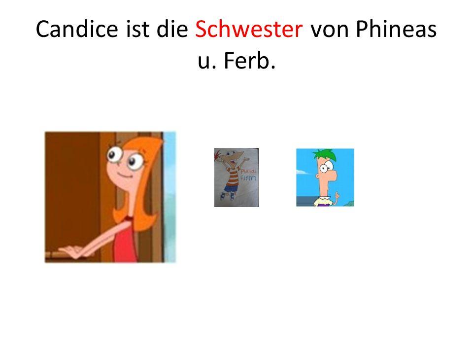 Candice ist die Schwester von Phineas u. Ferb.