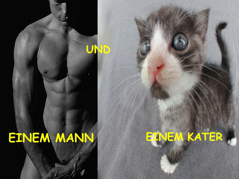 UND EINEM MANN EINEM KATER