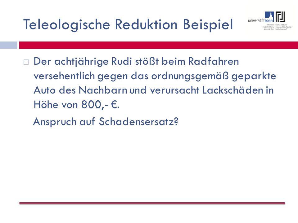 Teleologische Reduktion Beispiel