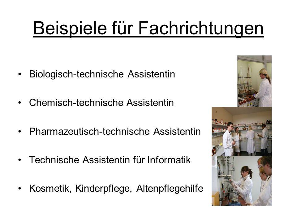 Beispiele für Fachrichtungen