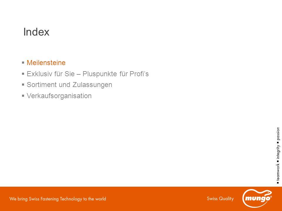 Index Meilensteine Exklusiv für Sie – Pluspunkte für Profi's