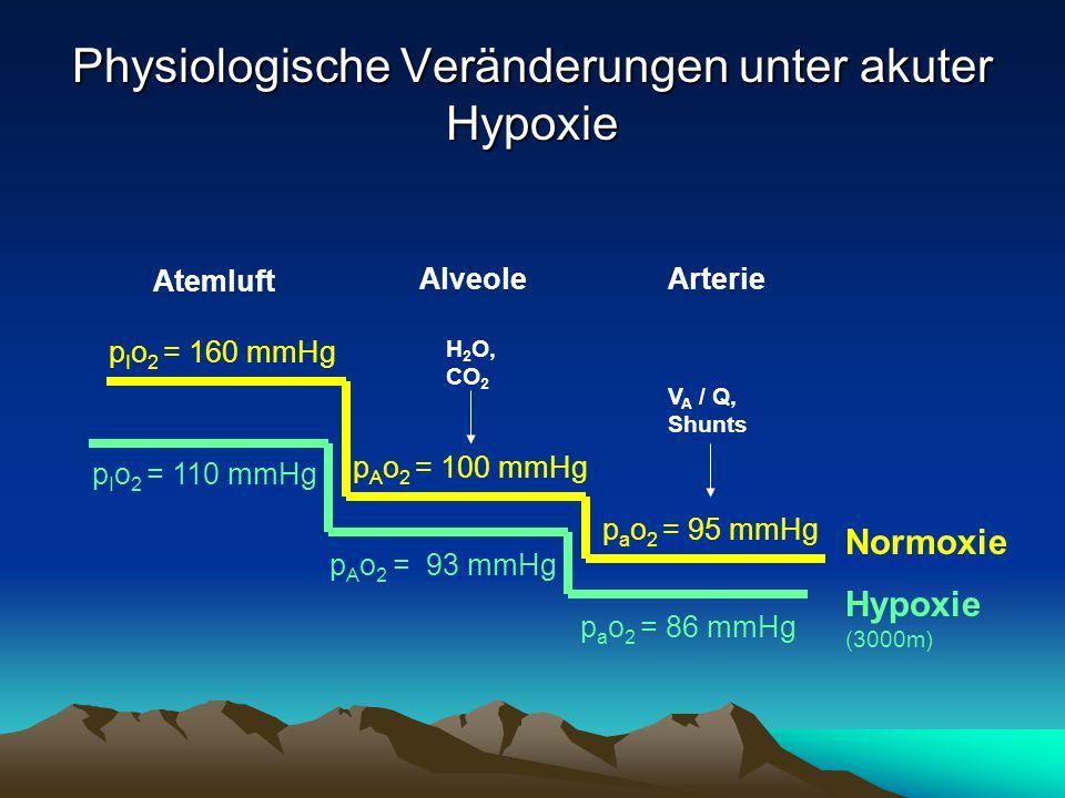 Physiologische Veränderungen unter akuter Hypoxie