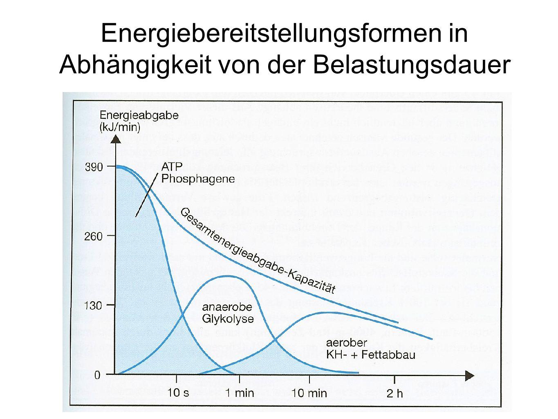 Energiebereitstellungsformen in Abhängigkeit von der Belastungsdauer