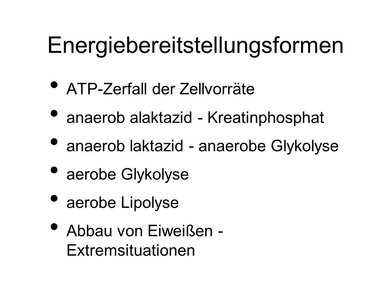 Energiebereitstellungsformen