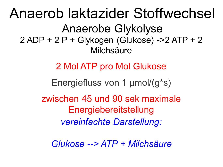 Anaerob laktazider Stoffwechsel Anaerobe Glykolyse