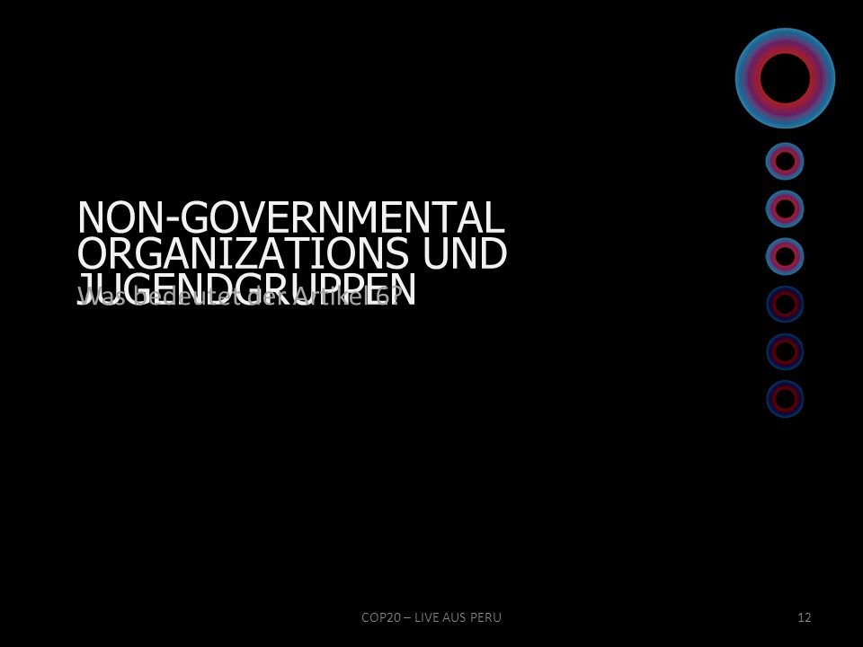 NON-GOVERNMENTAL ORGANIZATIONS UND JUGENDGRUPPEN