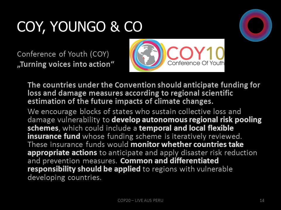 COY, YOUNGO & Co
