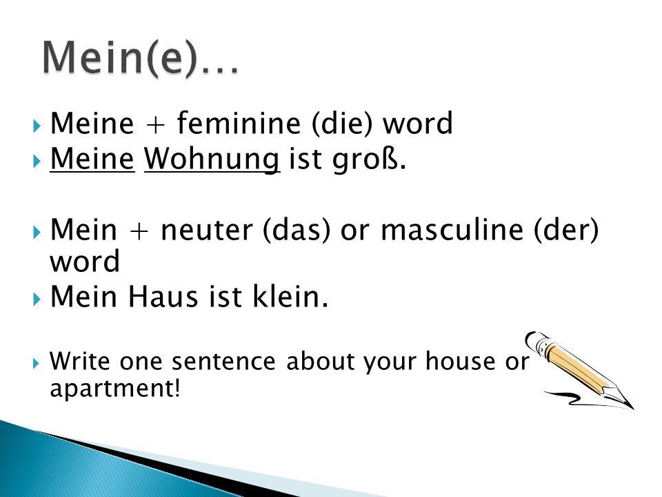 Mein(e)… Meine + feminine (die) word Meine Wohnung ist groß.