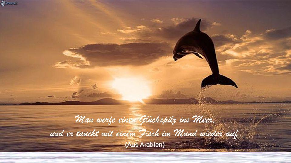 Man werfe einen Glückspilz ins Meer, und er taucht mit einem Fisch im Mund wieder auf. (Aus Arabien)