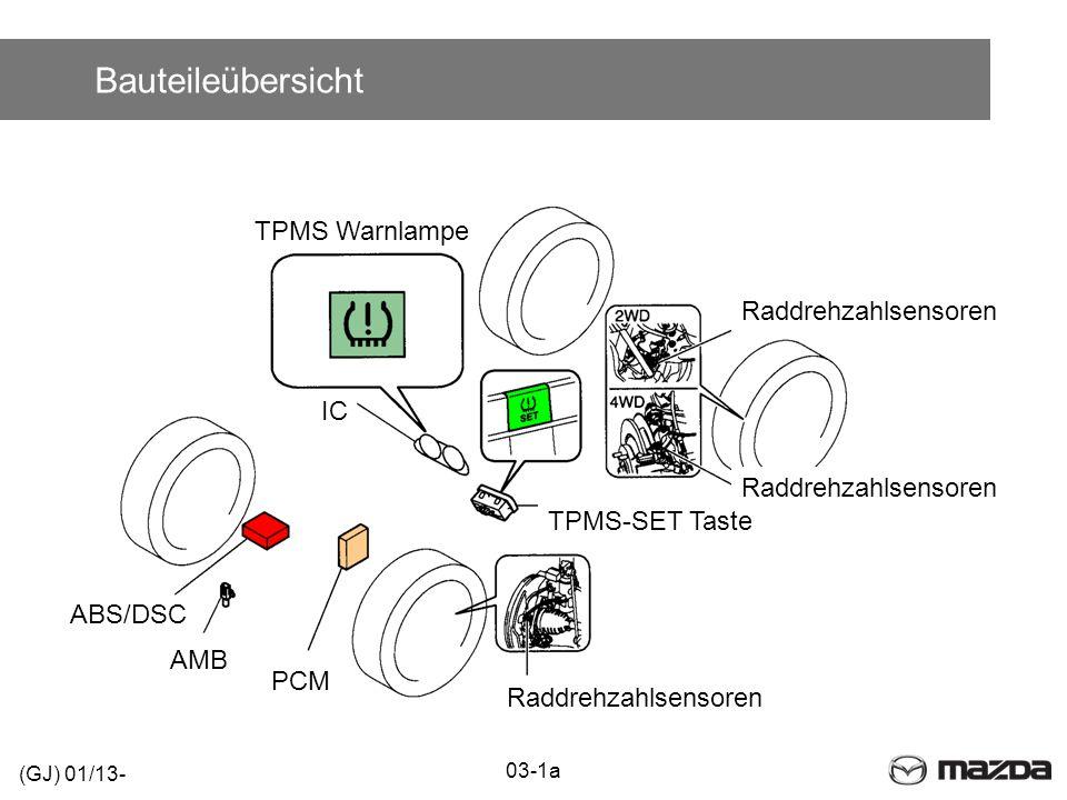 Bauteileübersicht TPMS Warnlampe Raddrehzahlsensoren IC