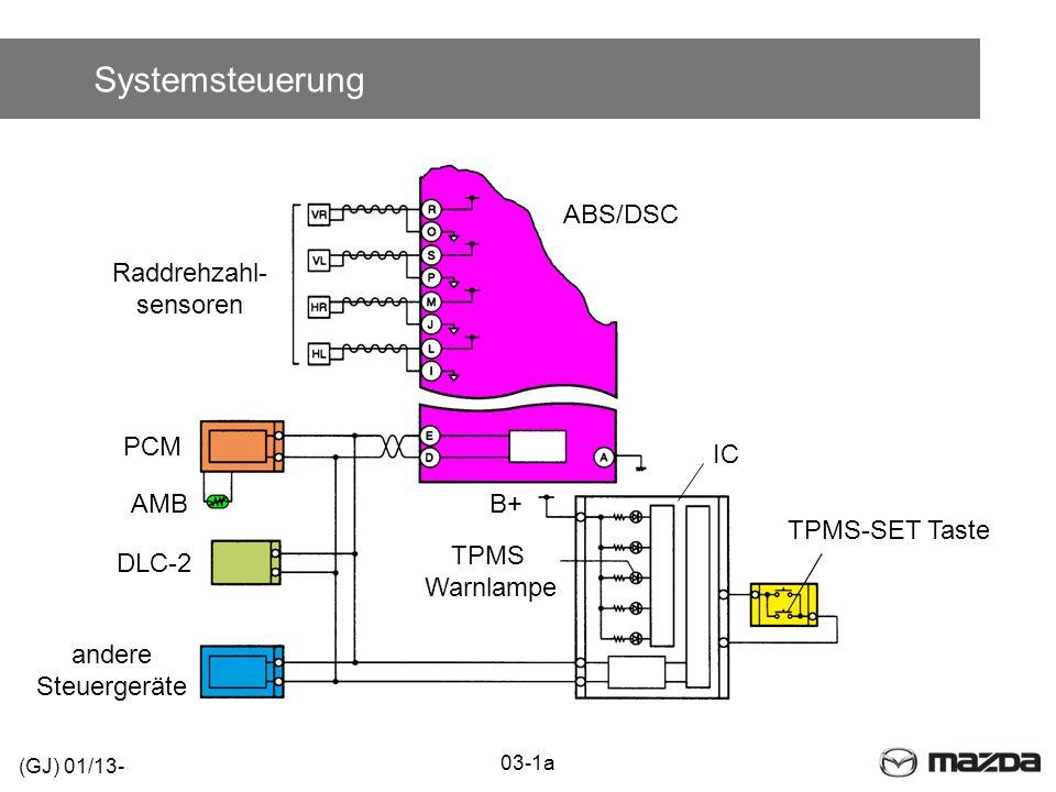 Systemsteuerung ABS/DSC Raddrehzahl- sensoren PCM IC AMB B+