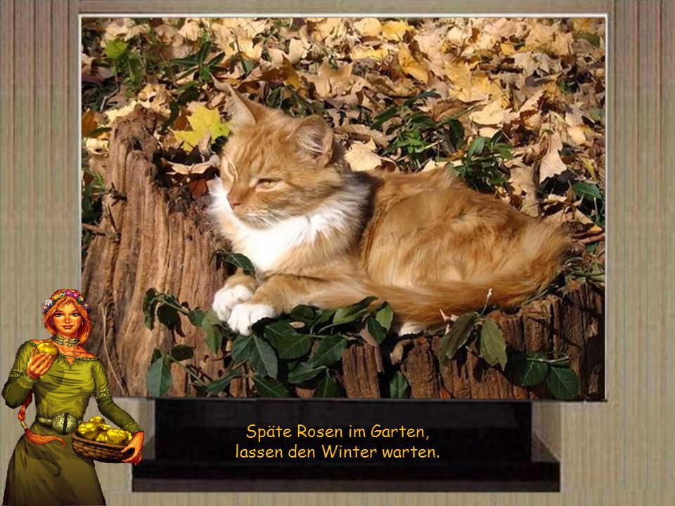 lassen den Winter warten.