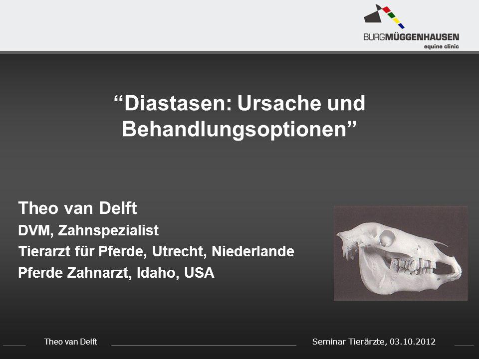 Diastasen: Ursache und Behandlungsoptionen