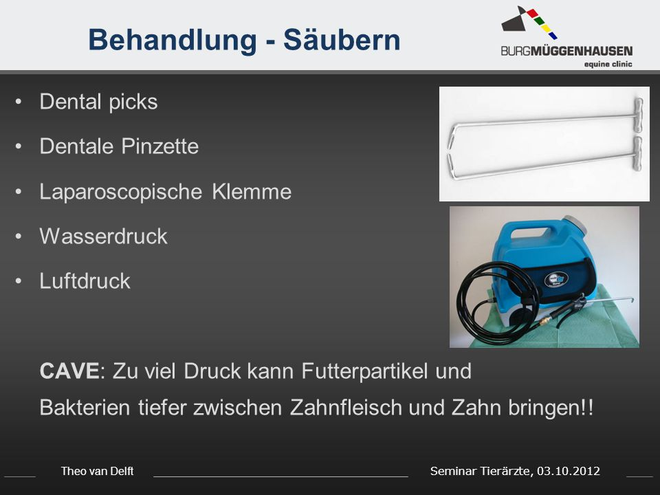 Behandlung - Säubern Dental picks Dentale Pinzette