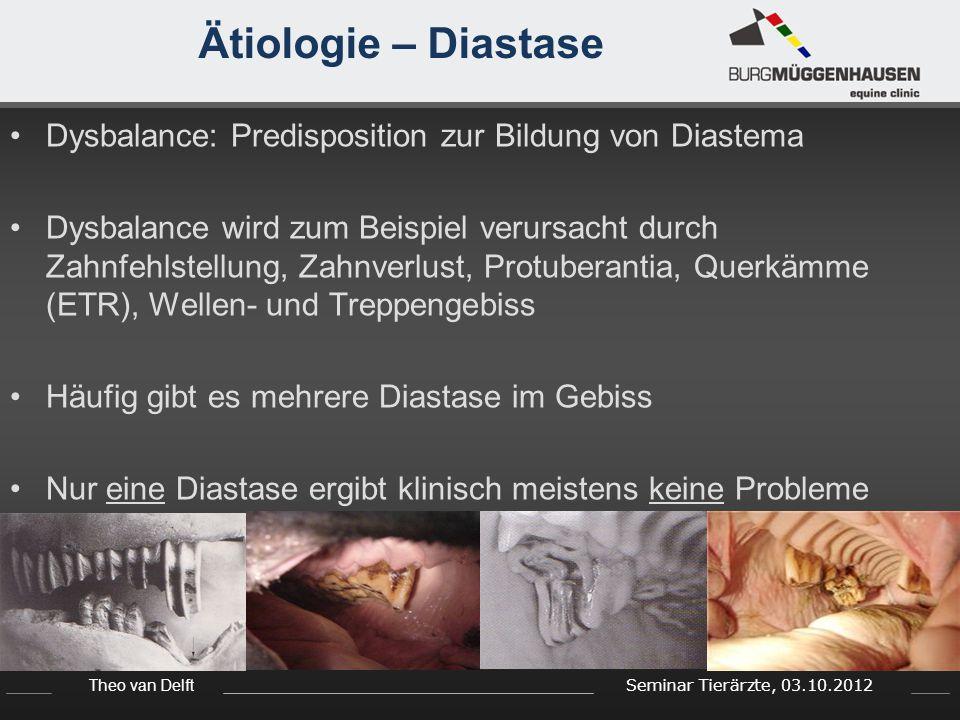 Ätiologie – Diastase Dysbalance: Predisposition zur Bildung von Diastema.