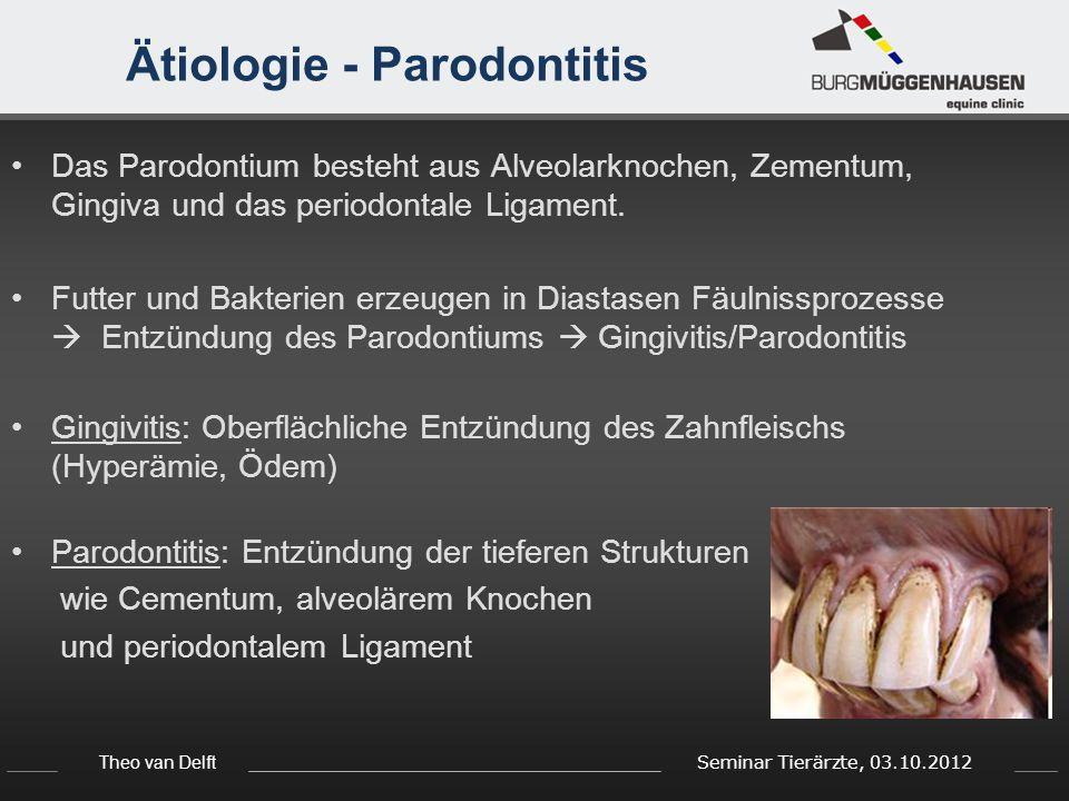 Ätiologie - Parodontitis
