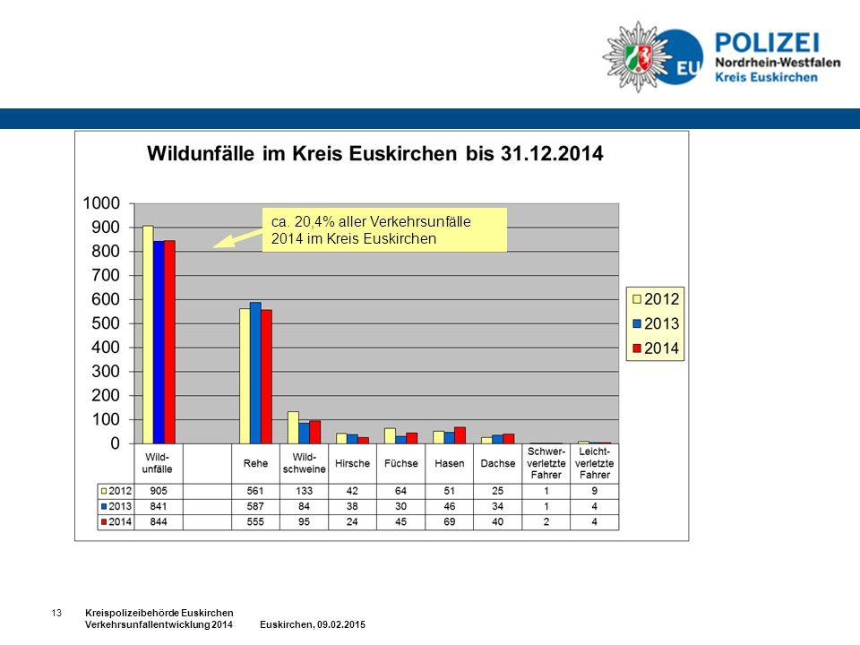 ca. 20,4% aller Verkehrsunfälle 2014 im Kreis Euskirchen