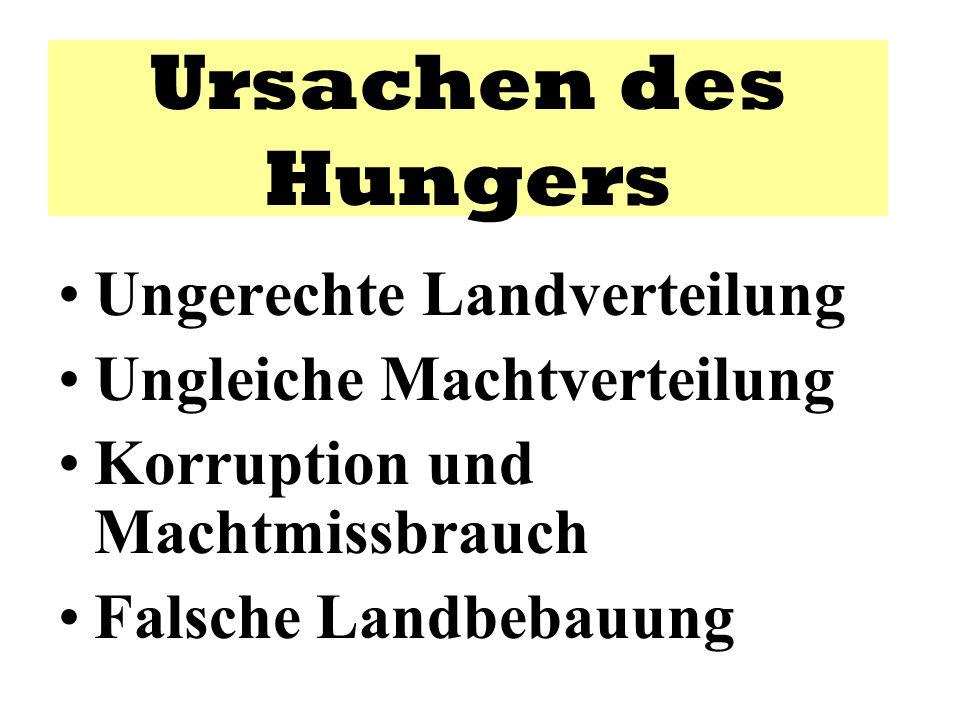 Ursachen des Hungers Ungerechte Landverteilung