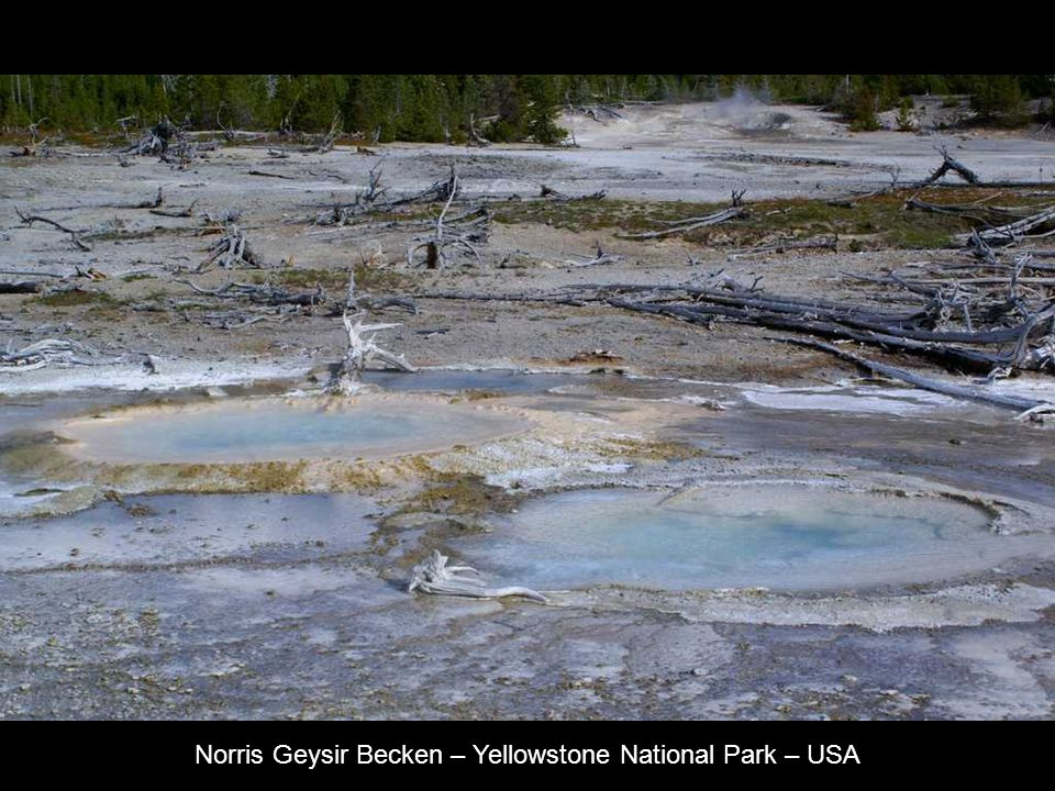 Norris Geysir Becken – Yellowstone National Park – USA