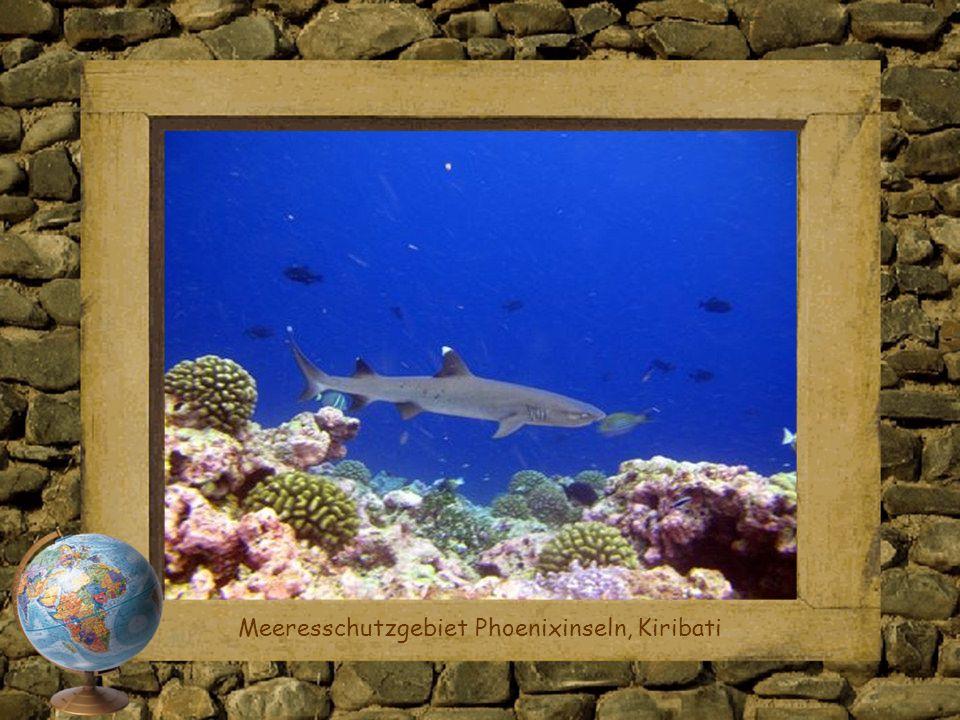 Meeresschutzgebiet Phoenixinseln, Kiribati