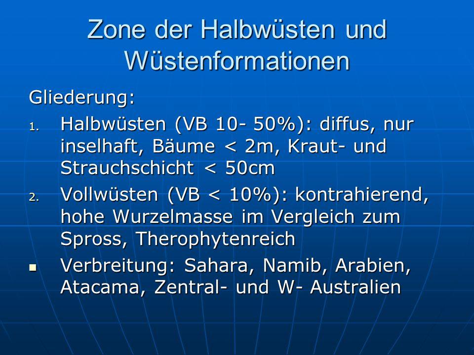 Zone der Halbwüsten und Wüstenformationen