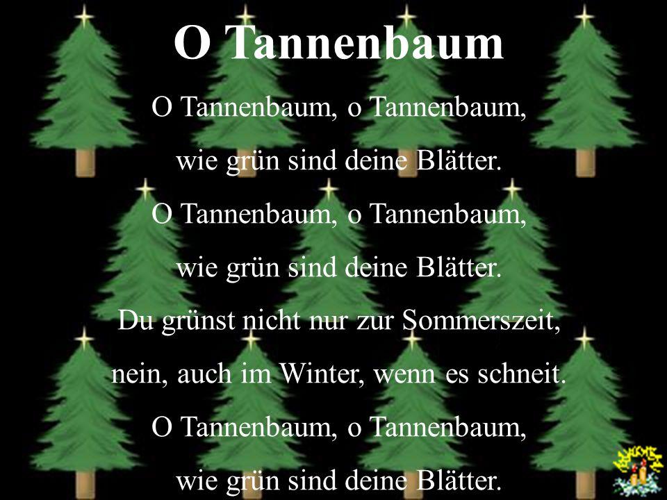O Tannenbaum O Tannenbaum, o Tannenbaum, wie grün sind deine Blätter.